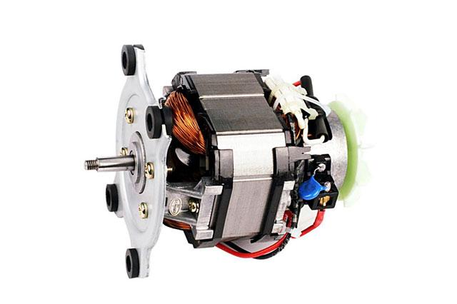 Wolong Motor
